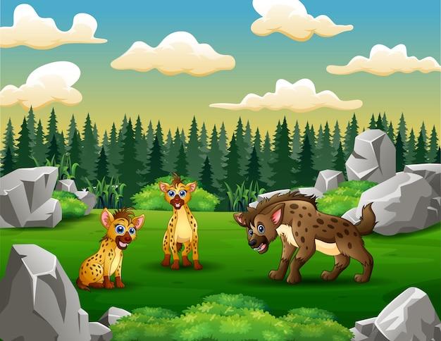 Cartoon hyena's in het groene veld