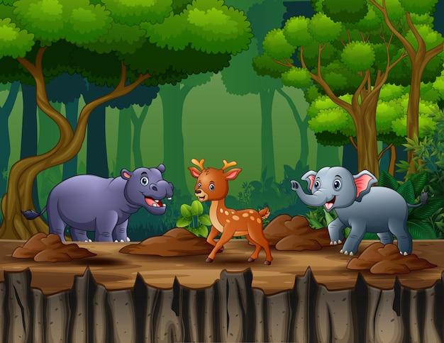 Cartoon illustratie van wilde dieren spelen in de jungle