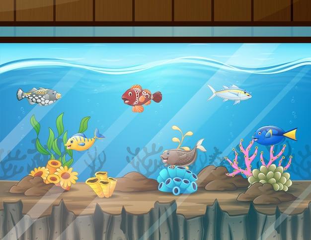 Cartoon illustratie van zoetwatervissen in aquarium aquarium