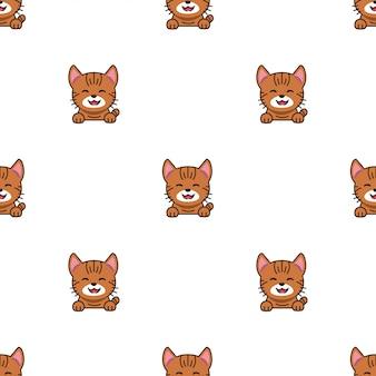Cartoon karakter cyperse kat naadloze patroon achtergrond