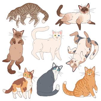Cartoon katten. schattige kittens verschillende kleuren, grappige luie kat. schattige speelse huisdieren, thuis gelukkig eenvoudige leuke komische dieren set