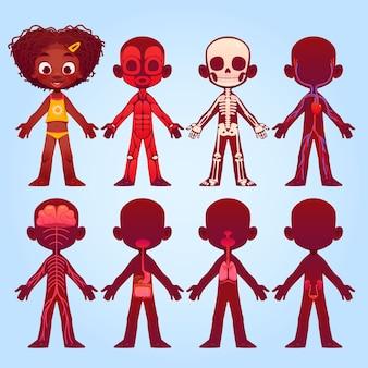 Cartoon kinderen anatomie collectie