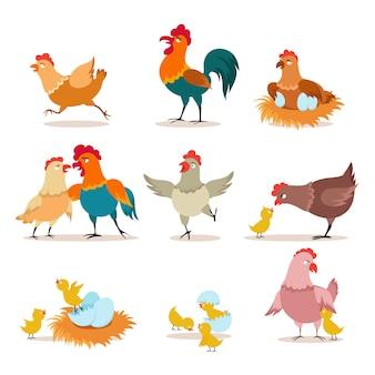 Cartoon kip. kuiken met eieren, kip en haan. happy christmas kip, binnenlandse vogels en valentijn huisdieren karakters