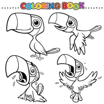 Cartoon kleurboek - neushoornvogel