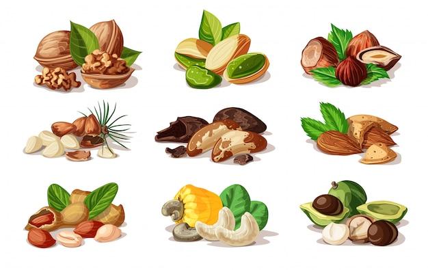 Cartoon kleurrijke noten set