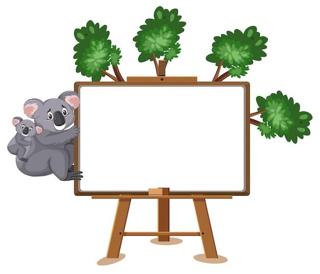 Cartoon koala en leeg teken op wit