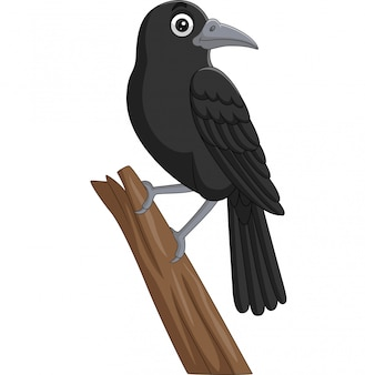 Cartoon kraai staande op een boomtak