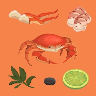 Cartoon krab voedsel collectie omar set zeevruchten en krab