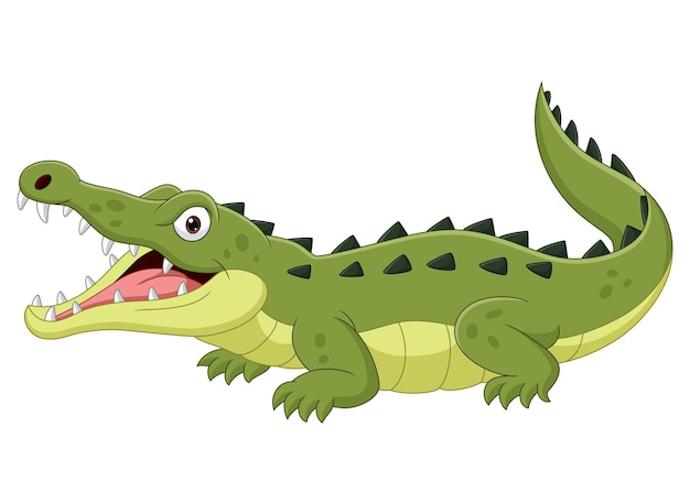 Cartoon krokodil geïsoleerd