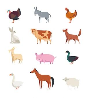 Cartoon landbouwhuisdieren en vogels set geïsoleerd.