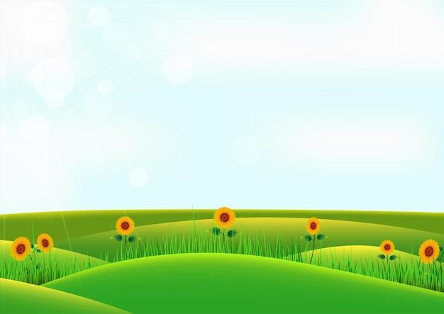 Cartoon lente veld. zonnebloem en gras op heuvel met hemelachtergrond