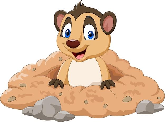 Cartoon meerkat in een gat