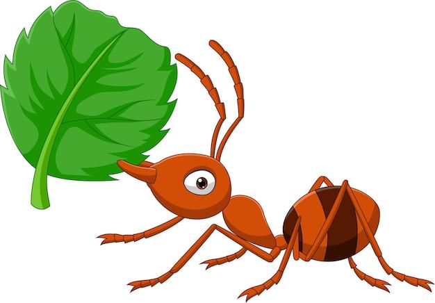 Cartoon mier met groen blad