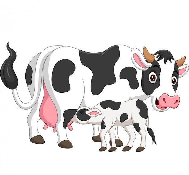 Cartoon moeder koe voederen baby kalf