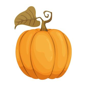 Cartoon pompoen pictogram. oranje en gele herfst pompoen. grote kalebasgroente. boerderij oogst groente vers en smakelijk.