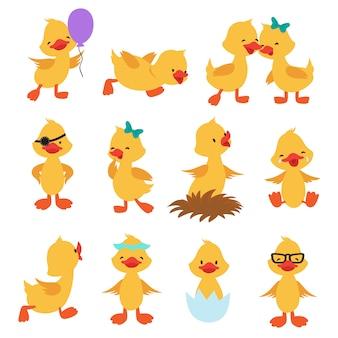 Cartoon schattige eenden. kleine baby gele kuiken geïsoleerde tekens