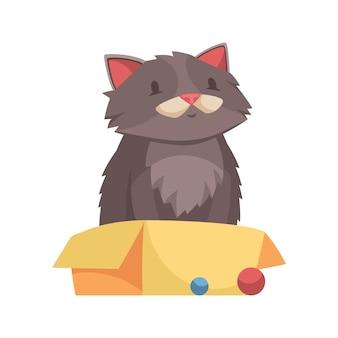 Cartoon schattige volwassen kat zit in gele doos