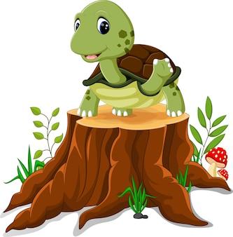Cartoon schildpad poseren op boomstronk