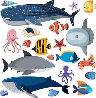 Cartoon sea life naadloze patroon met zeedieren karakter