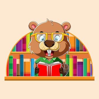Cartoon slimme bever met behulp van de bril om te lezen en in de bibliotheek te zitten