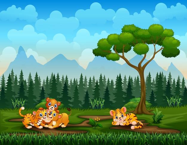 Cartoon tijger en leeuw families spelen in de natuur