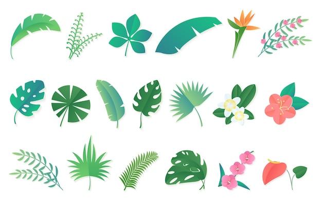 Cartoon tropisch regenwoud bladeren en bloemen instellen