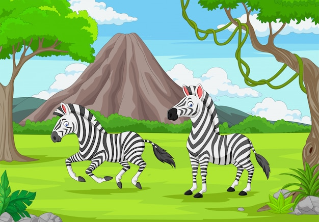 Cartoon twee zebra's in de jungle
