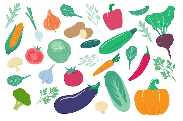 Cartoon ui, maïs en wortel, komkommer en aardappel, kool