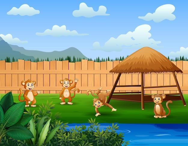 Cartoon van een paar apen die in het park spelen