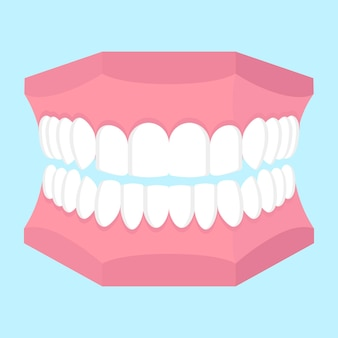 Cartoon vectorillustratie van tandheelkundige kaak model geïsoleerd op blauwe achtergrond.