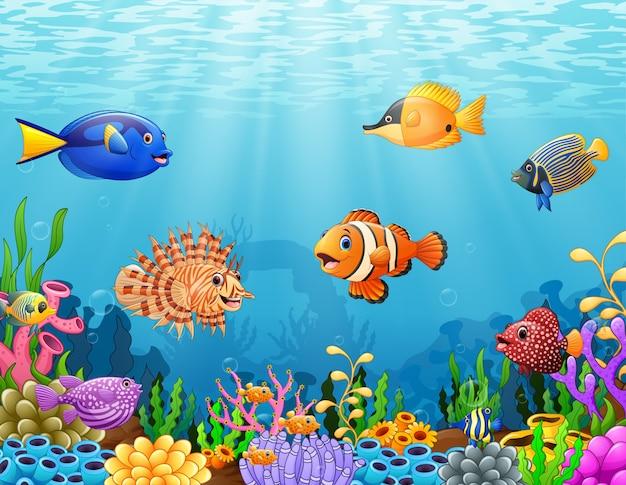Cartoon vis onder de zee