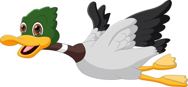 Cartoon vliegende eend geïsoleerd op een witte achtergrond