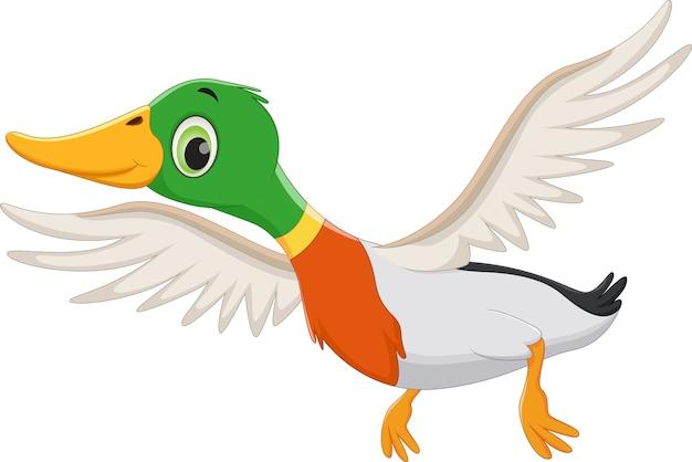 Cartoon vliegende eend