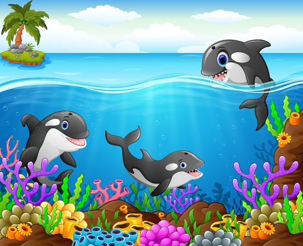Cartoon walvis onder de zee