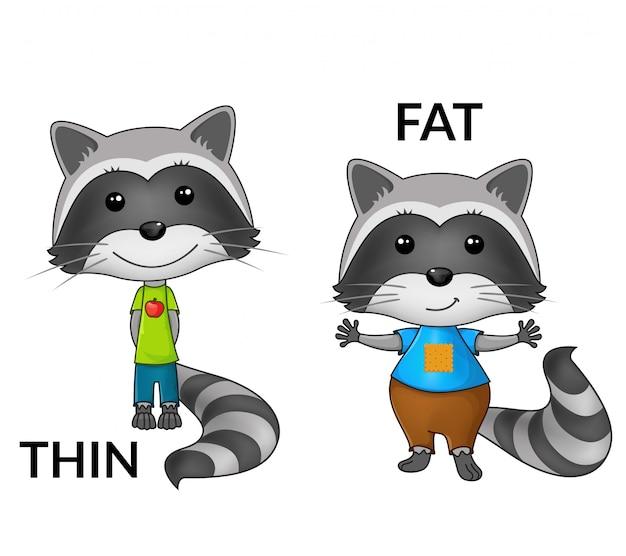 Cartoon wasberen. tegenstellingen.
