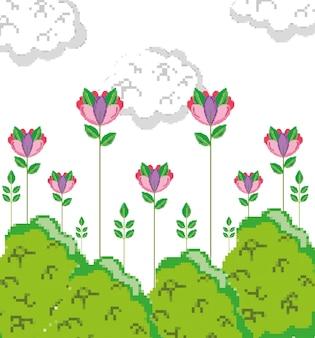 Cartoons van natuurlijke pixels