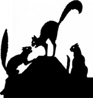 Cat fight silhouet