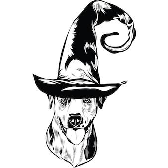 Catahoula hond in heksenhoed voor halloween