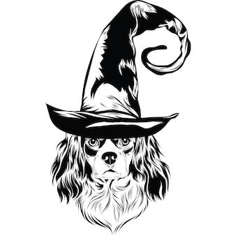 Cavalier king charles spaniel hond in heksenhoed voor halloween