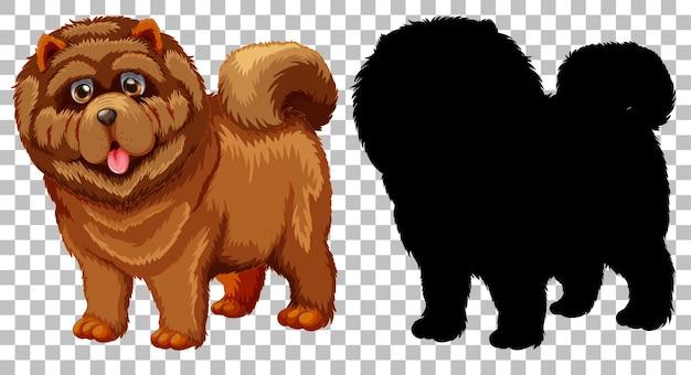 Chao chao hond en zijn silhouet