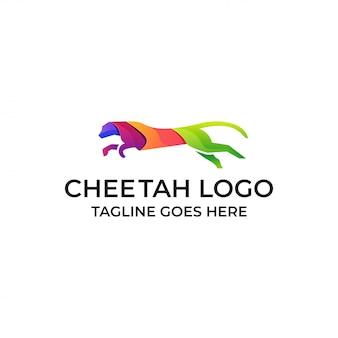 Cheetah run kleurrijke sjabloon
