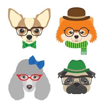 Chihuahua, pug, poedel, pommeren bril met bril en accessoires in vlakke stijl.