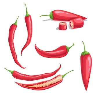 Chili peper in cartoon vlakke stijl. ander soort hete pittige groenten. heel en gesneden. cayenne pepers. vectorillustraties geïsoleerd op een witte achtergrond.