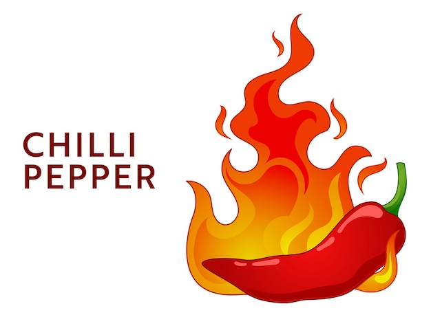 Chilipeper in brand. pittig voedselniveau. voedsel infographic.