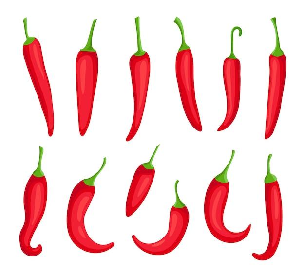Chilipepers. cartoon pittige hete rode peper. cayenne en capsaïcine kruidingrediënt voor chilisaus. mexicaanse peper logo element vector set. brandende biologische kruiden voor het koken van voedsel
