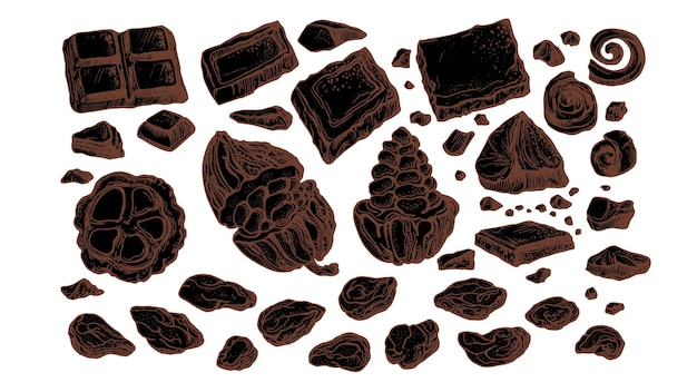 Chocolade en cacao. fruit- en bonenset. hand getrokken schets, natuurlijke zoete voeding