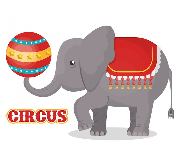 Circus show ontwerp