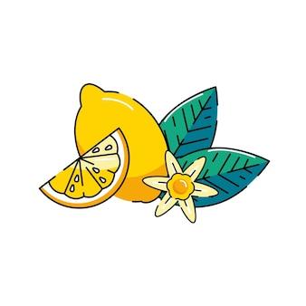Citroen logo. verse citroenvruchten op zomerseizoen. zomer fruit. citroen bloem