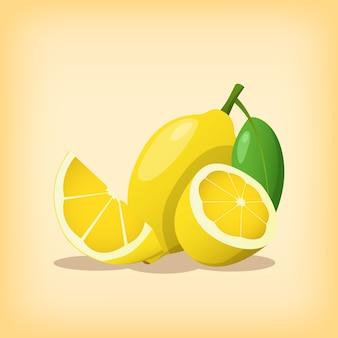 Citroenfruit single met hele vorm en in plakjes gesneden met moderne stijl en warme kleurenthema-illustratie