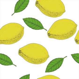 Citroenthee naadloze patroon. biologische kruiden warme dranken pakketontwerp. hand getekende inktkleur geschetst. ontwerp achtergrond.